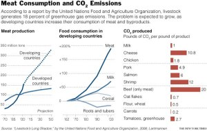 Meat Consumption and C02 Emissions